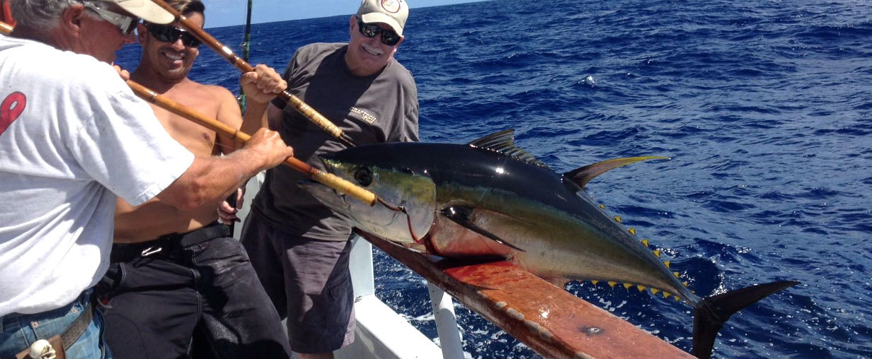 Independence sportfishing san diego ca for San diego sport fishing charters